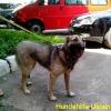 img_20130701_124655 (1)