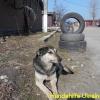 yulja-2_april2015-1