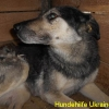 yulja_juli2015-3