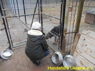 hajnowka_feb2015-3