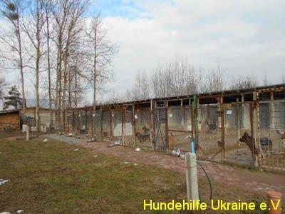 hajnowka_feb2015-5
