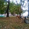 Lada2