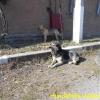 yulja-2_april2015-3