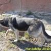 yulja-2_april2015-4