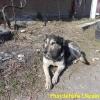 yulja-2_april2015-6