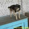 yulja_juli2015-2